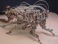 biorobotside24804.jpg