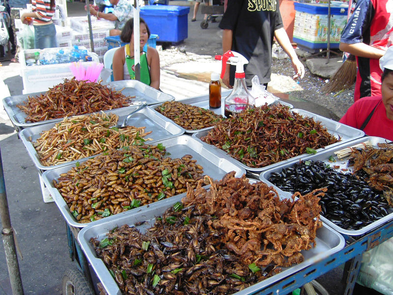 800px-insect_food_stall.JPG